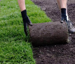 Kitchener Waterloo Cambridge sod installation by riker volchok construction