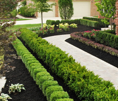 Kitchener Waterloo Cambridge garden beds by riker volchok construction